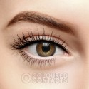 FRESHLOOK COLORBLENDS BROWN COLOURED CONTACT LENSES