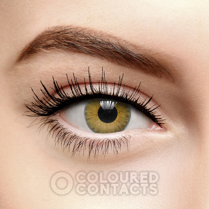 FRESHLOOK COLORBLENDS PURE HAZEL COLOURED CONTACT LENSES